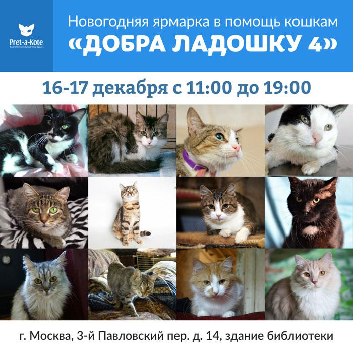 Купить подарок и помочь животным: в Москве в четвертый раз пройдет ярмарка ДОБРА_ЛАДОШКУ